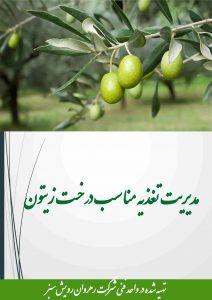 مدیریت تغذیه مناسب درخت زیتون