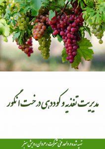 مدیریت تغذیه و کوددهی انگور