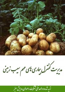 کنترل بیماری های مهم سیب زمینی
