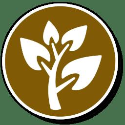 کودهای اصلاح کننده خاک